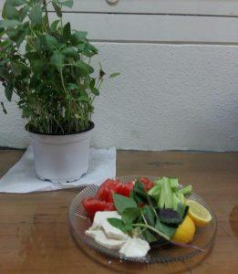 انواع غذا با توفو