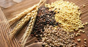 میزان کربوهیدرات مواد غذایی