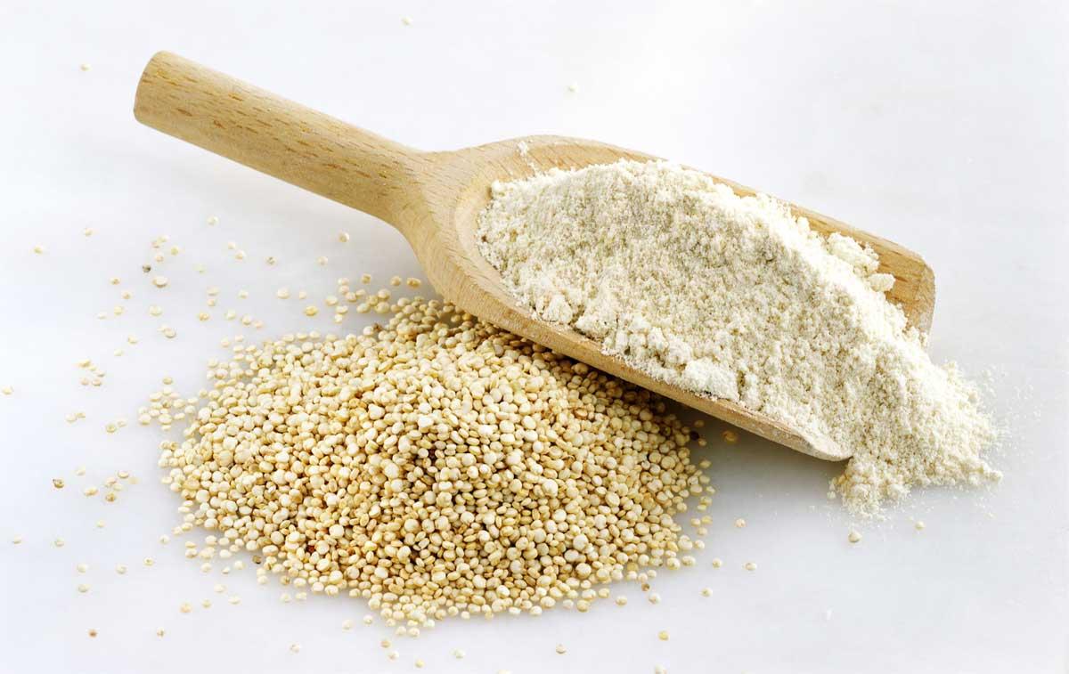پروتئین گیاهی بدنسازی