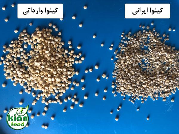 تفاوت کینوا وارداتی و کینوا ایرانی